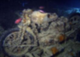 Mergulho em Serrambi