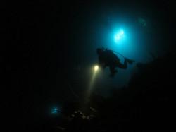 Diving College Mergulho Noturno