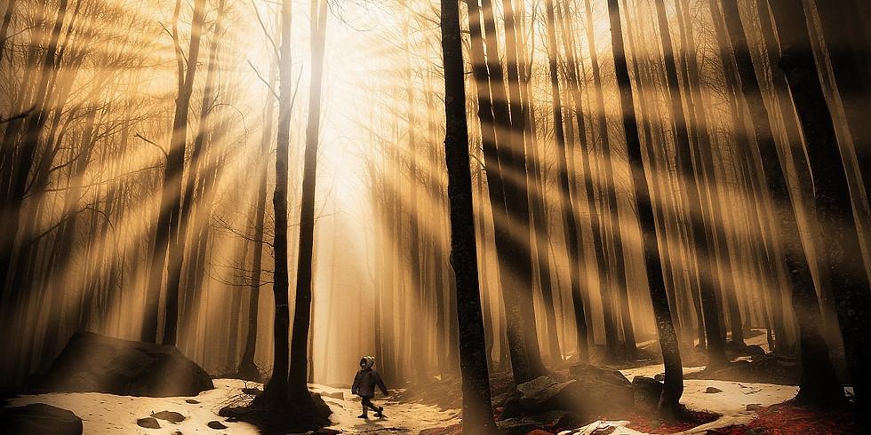 La smarrita nel bosco