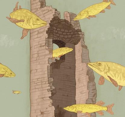 Un nuovo romanzo di Giuseppe Festa «I Lucci della via Lago» ecco il booktrailer girato a Predore