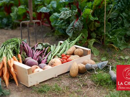 Nos 20 fruits et légumes de Mai, stars des repas de La Cigale !