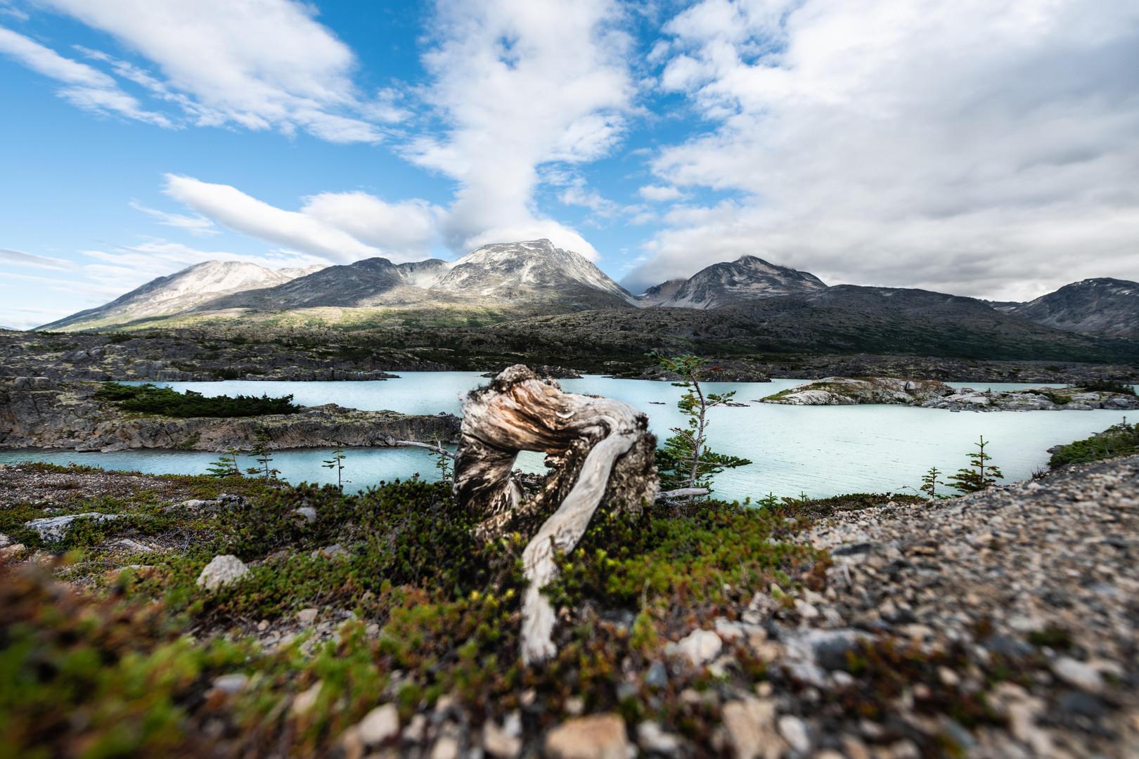 Alaska10.jpg