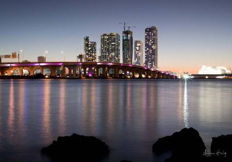 Miami18.jpg