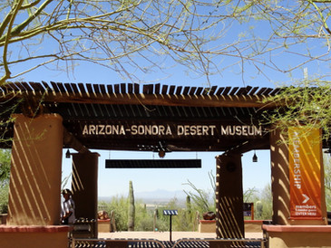 Craft Culinary Concepts Extends Partnership with Arizona-Sonora Desert Museum
