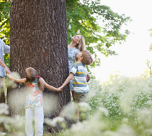 Photo famille en transition - Arbre.jpg