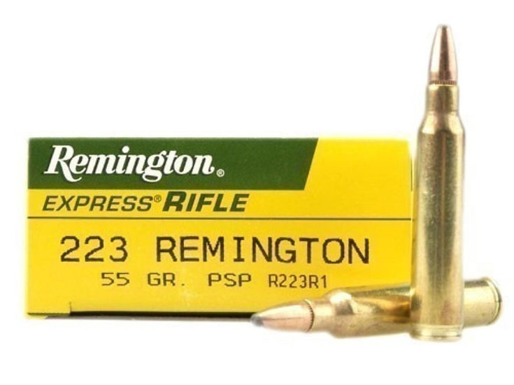 REMINGTON- 223 55GR PSP