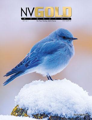 NVG-Cover.jpg