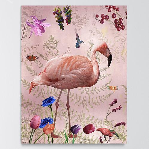 Paneel Audubon Pink