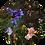 Thumbnail: Cirkel Iris