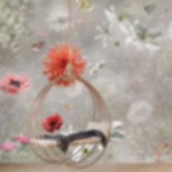 2 misty poppy 2.jpg