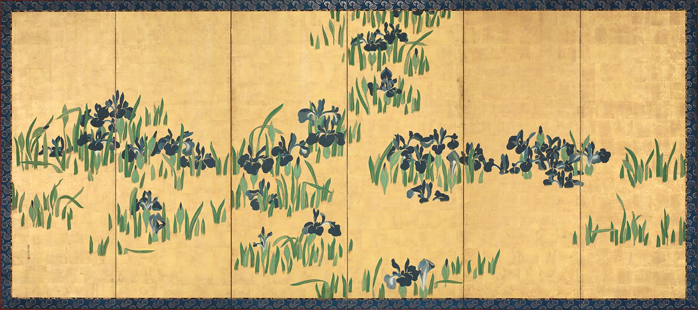Irissen.jpg