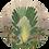 Thumbnail: Cirkel Banana Tree
