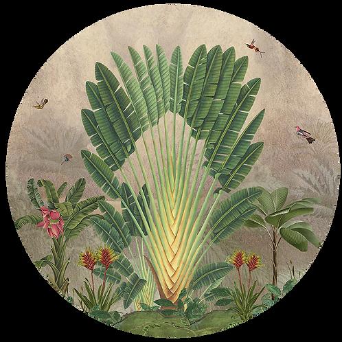 Cirkel Banana Tree