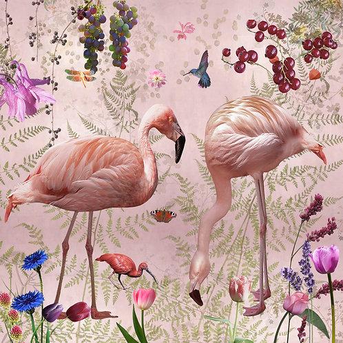 Sample of Audubon Pink wallpaper and Ecotex