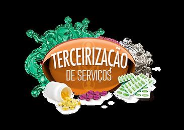 terceiriza.png
