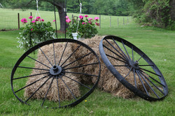 wagon_wheels