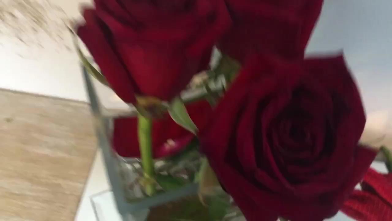 Rose Bows™ by AVS™   Anastasia V. Silva™