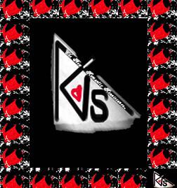 The New Romantic Renaissance™ Signature Playing Card by AVS™ | Anastasia V. Silva™