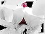 7550_Her Magnolia Majesty's Request_Clip Art_Boites de Bijoux_Jewelry Boxes_Art Shot_by Anastasia V. Silva_The New Romantic Renaissance (by AVS)