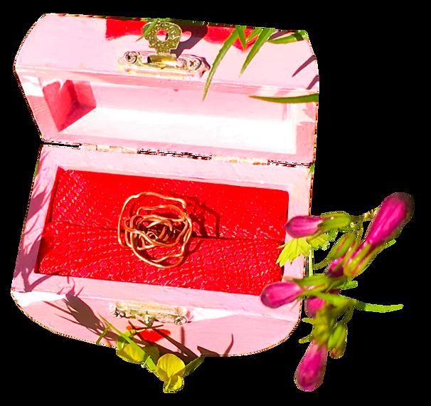 6177_1 (2)_Boites de Bijoux_Une Rose Rouge_Weddings_Bridal_Accessories_by Anastasia V. SIlva_The New Romantic Renaissance_(by AVS)