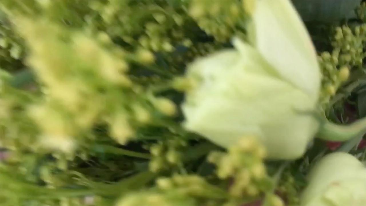 The Wedding Day: The Bride (by AVS™) | Anastasia V. Silva™