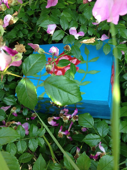 3594_Jewelry Boxes_Boites de Bijoux_Wild Primrose Vine_Romantic Gifts_by Anastasia V. Silva_The New Romantic Renaissace (by AVS)