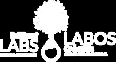 NaturalMakerspace_Logo_Jan2020_White.png