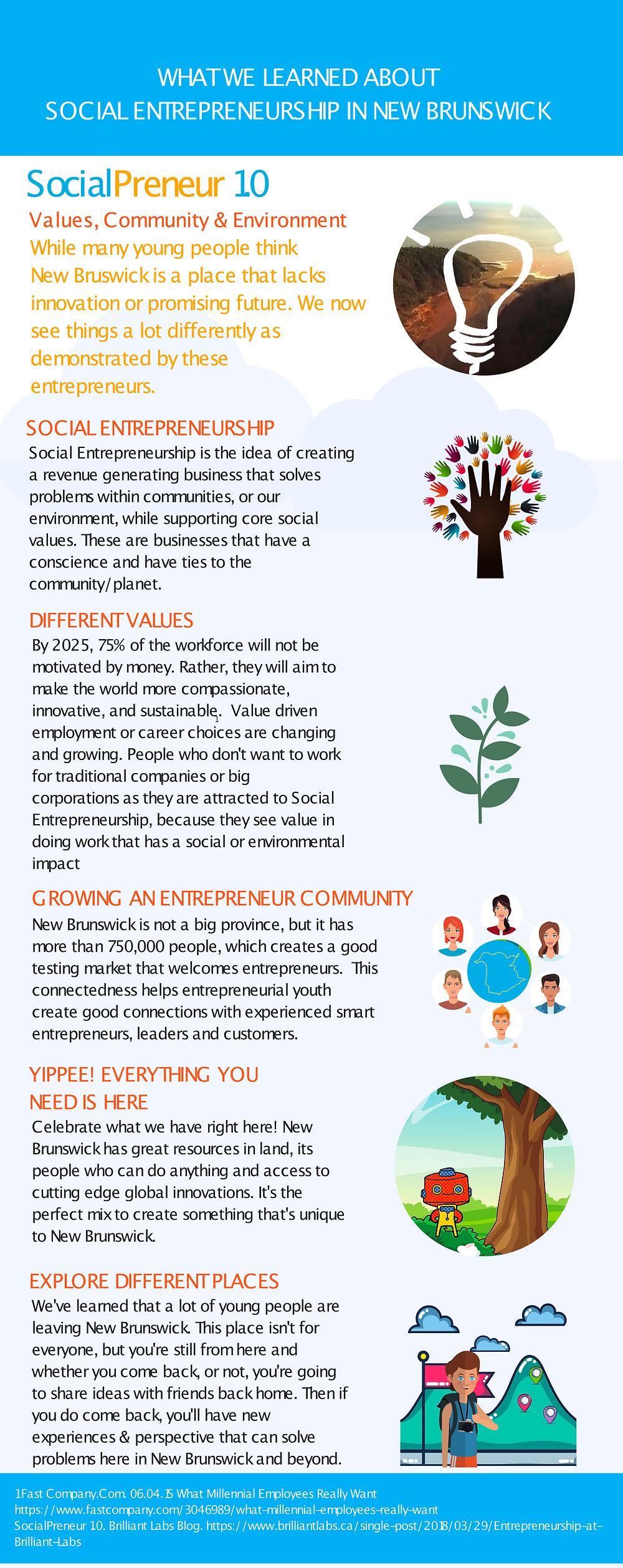 Social Entrepreneurship Infographic