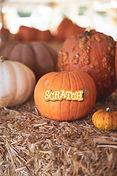 Scratch_pumpkin.jpg