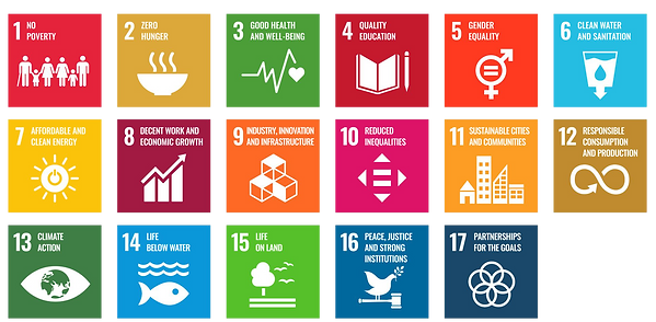 SDG_card_ENG_png.png