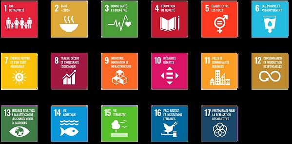 SDG_card_FR_png.png