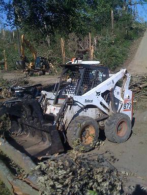 bobcat_work_ew.jpg