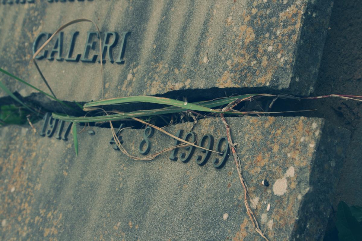 lapide-rotta-1999-licheni-cimitero