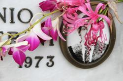 cimitero-fiori-rosa-foto-nascosta