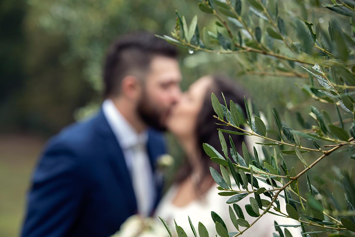 ulivo-e-sposi