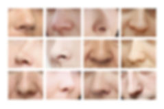 Noses. Various forms of the nose.jpg