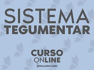Curso de Estetica Sistema Tegumentar.jpg