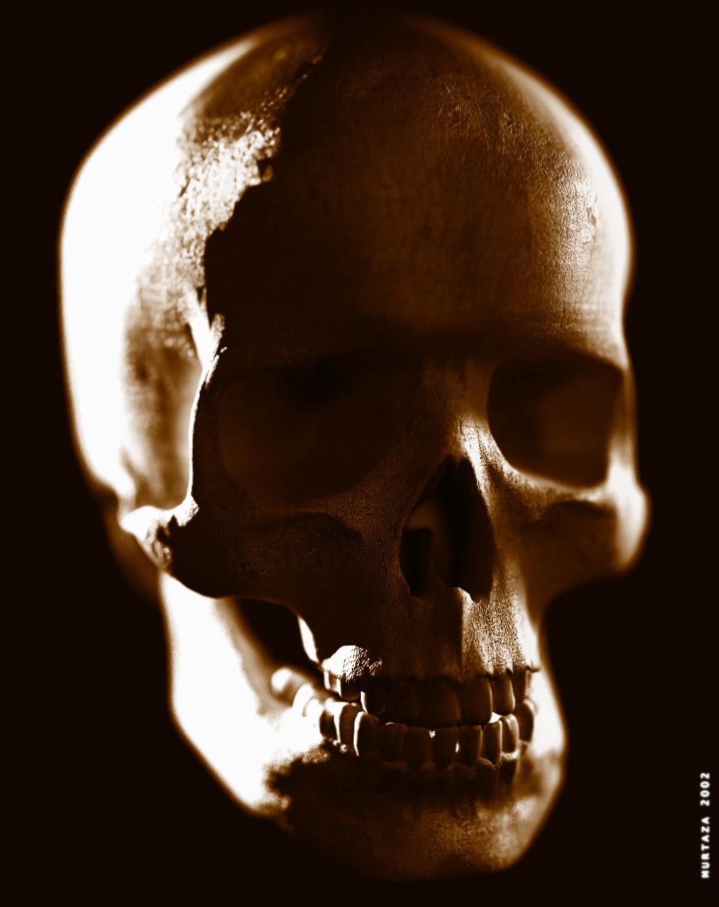 skullfinal.jpg