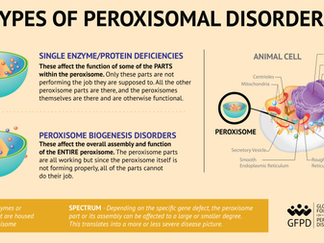Types of peroxisomal disorders: peroxisomal biogenesis disorders and single enzyme protein deficienc