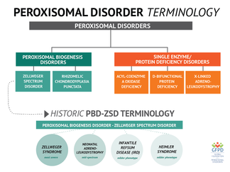 History of peroxisome biogenesis disorder-Zellweger spectrum disorder (PBD-ZSD) Terminology