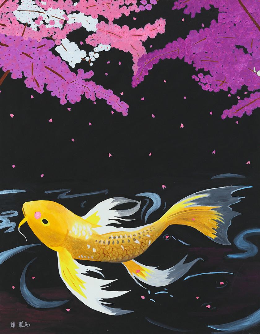 夜桜と金色に輝く鯉.jpg