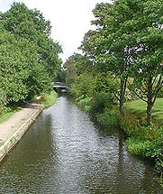 Basingstoke Canal and Towpath.jpg