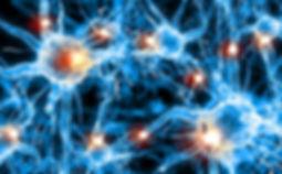 nerve-cells-brain.jpg