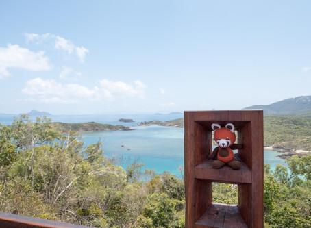 Les tribulations de Momiji, sur la côte australienne
