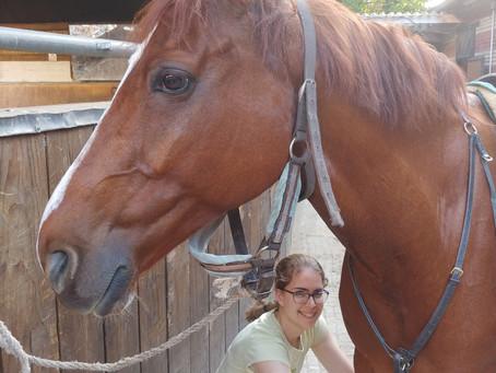 Des chevaux et des sourires