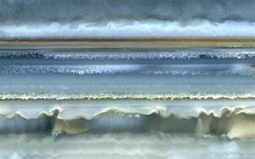 Richard Weston