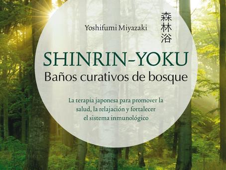 """Shinrin Yoku, el arte de los """"baños"""" de bosque"""