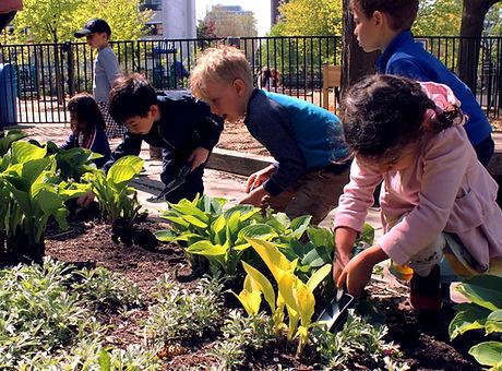 Young children exploring plants in an outdoor garden.
