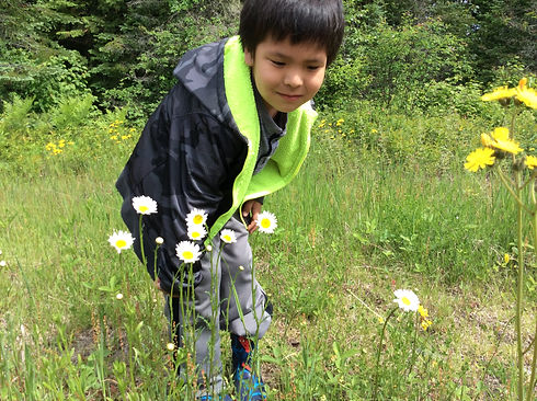 A child with dark short hair in a jacket exploring in the wild. There are some daisy flowers in front of the child's legs