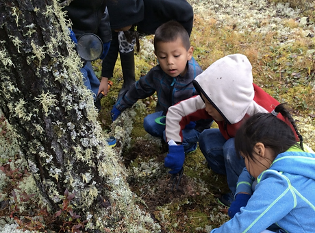 Three children digging and exploring the soil next to a tree